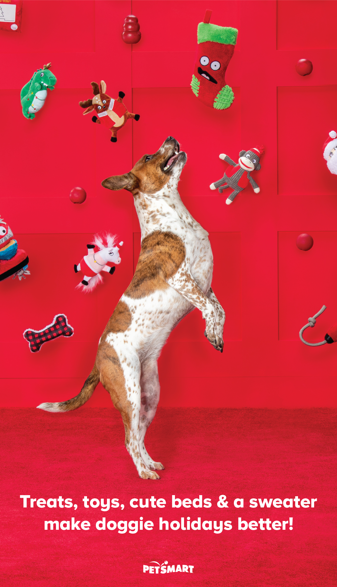 Treats, toys, cute beds & a sweater make doggie holidays better!