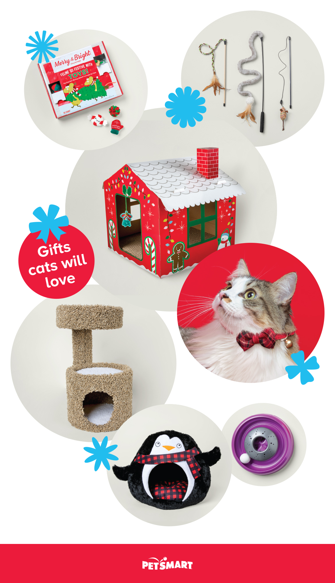 Gifts cats will love