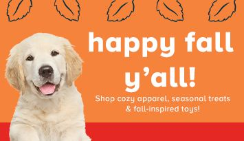 Shop cozy apparel, seasonal treats & fall-inspired toys!
