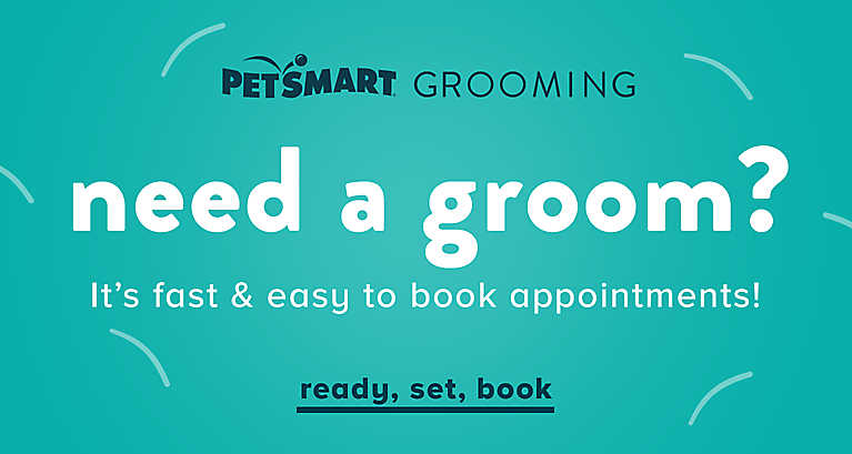 It's fast & easy to book appointments! Ready, set, book