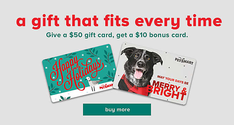 a gift that fits every time - Give a $50 gift card, get a $10 bonus card. - buy now >