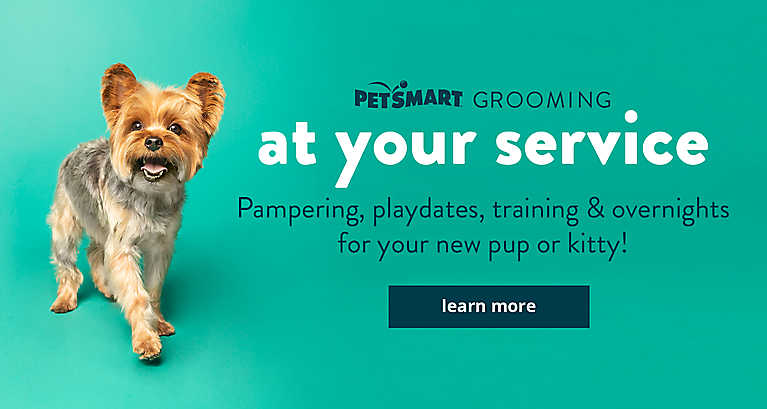 We're at your service! Pampering, playdates, training & overnights for your new pup or kitty! learn more >