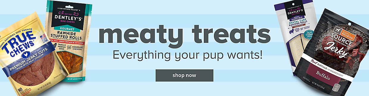 Everything your pup wants!