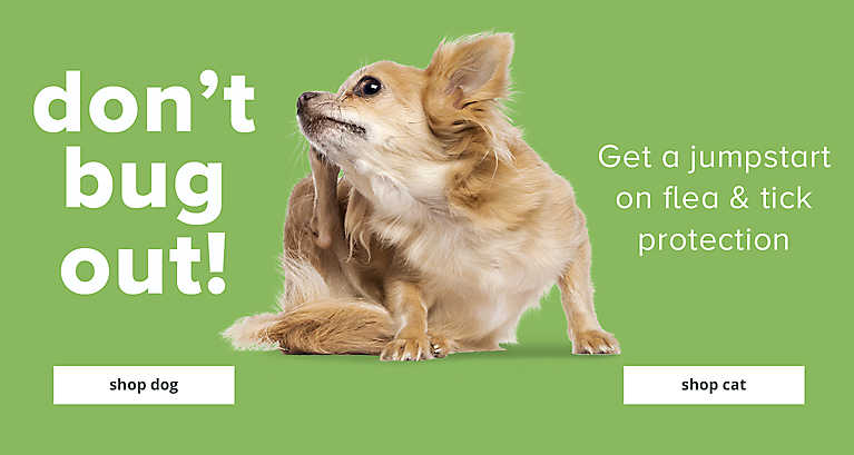 Don't Bug out! Get a jumpstart on flea & tick protection. Shop now
