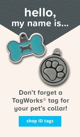 don't forget a tagworks tag for your pet's collar - shop id tags >