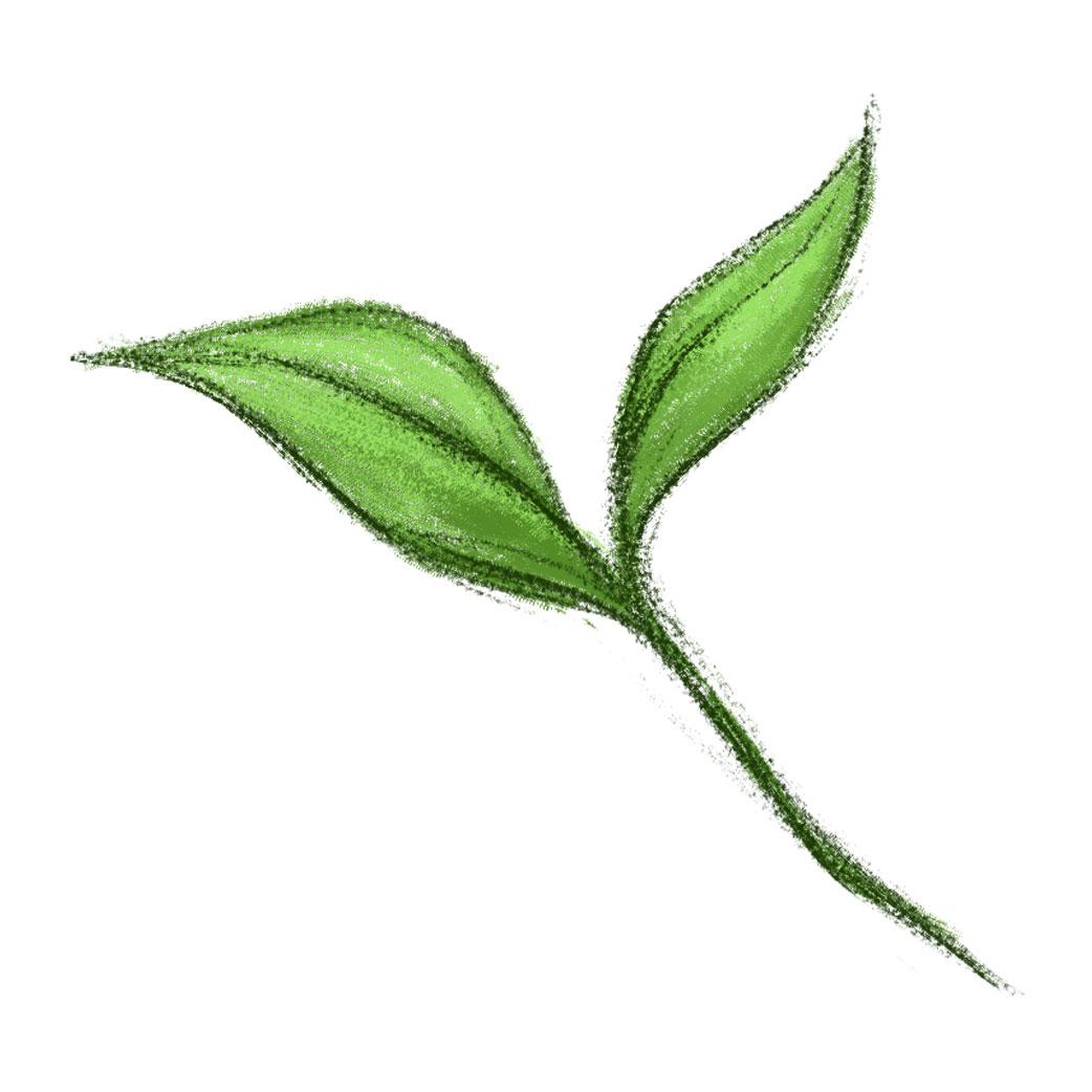 Natural (Illustration)