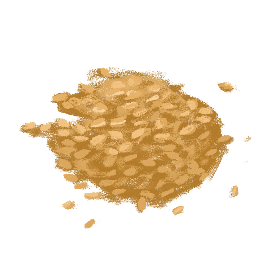 With Grains (Illustration)