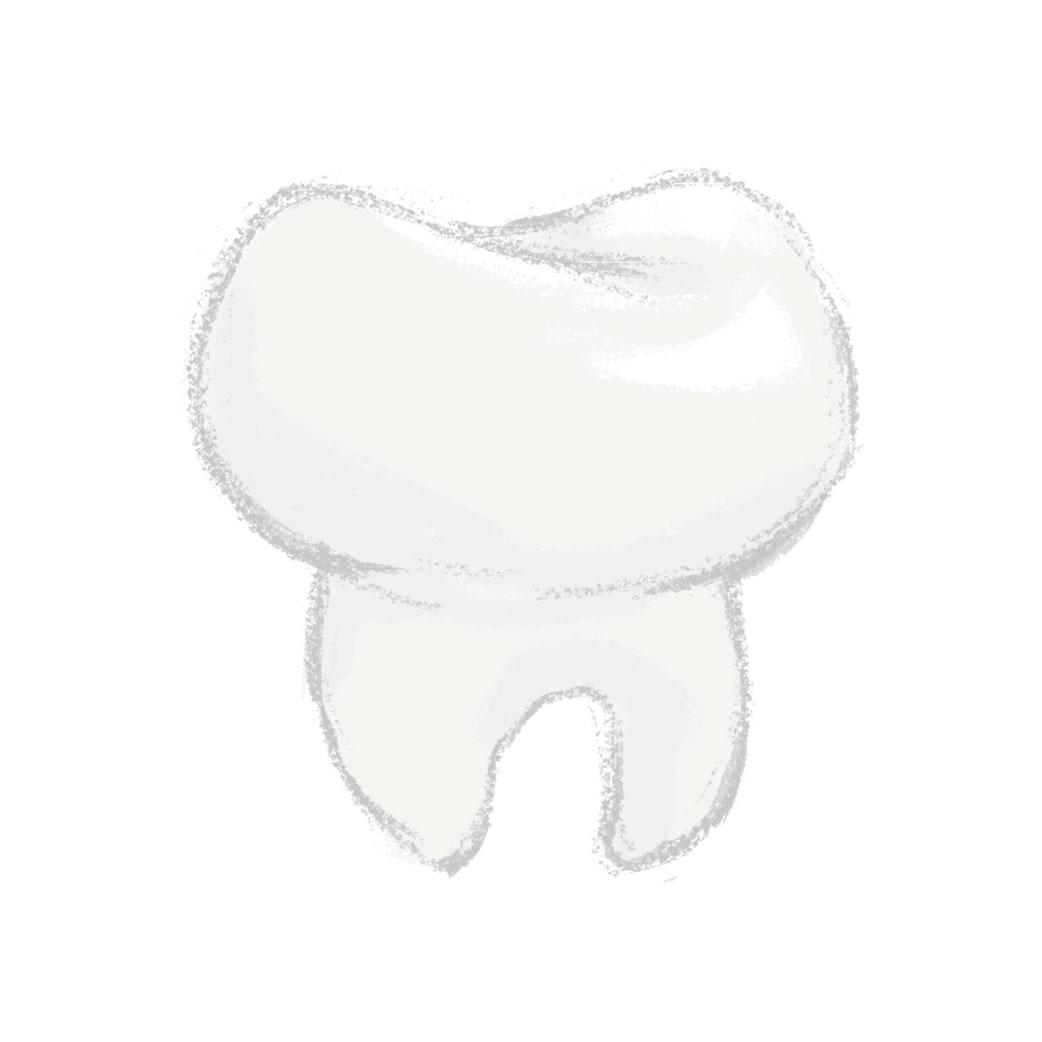 Dental Care (Illustration)