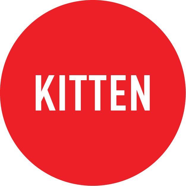 Start Your Kitten Strong