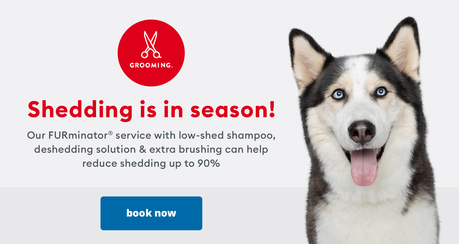 Shedding is in season, book now and reduce shedding up to 90%!