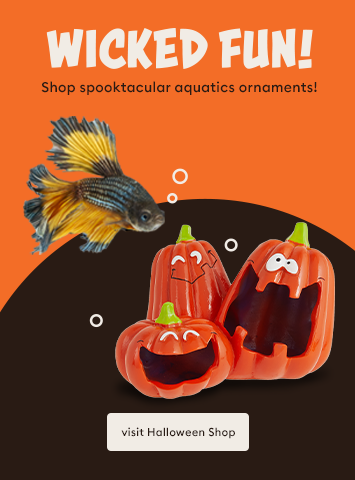 Shop Halloween Aquatic Accessories