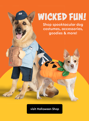 Shop Dog Halloween Costumes, Treats, Toys and more!