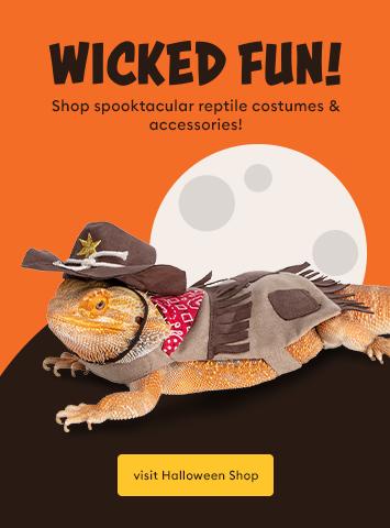 Shop Reptile Halloween Costumes