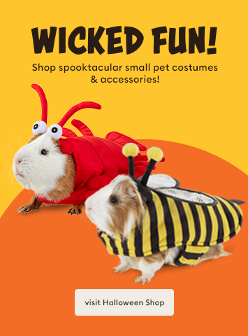 Shop Small Pet Halloween Costumes and Accessories
