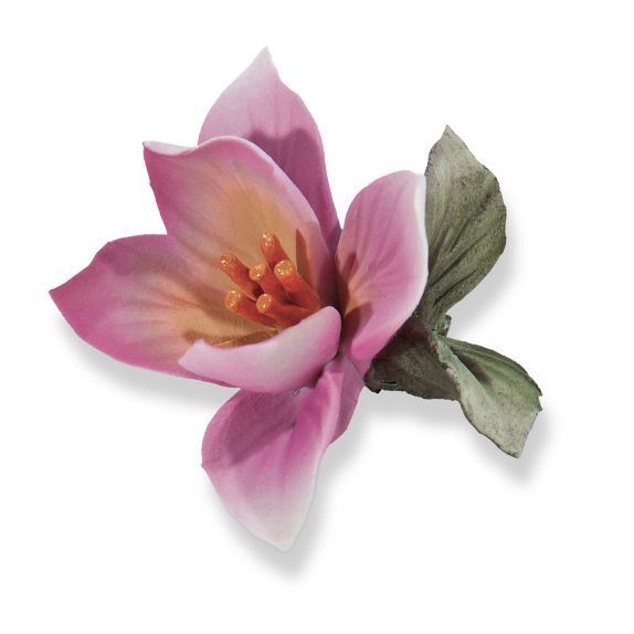 Handcrafted capodimonte porcelain dark pink flowers of italy uno handcrafted capodimonte porcelain dark pink flowers of italy uno alla volta mightylinksfo