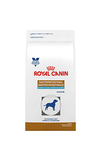 canine gastrointestinal treats for dogs royal canin. Black Bedroom Furniture Sets. Home Design Ideas