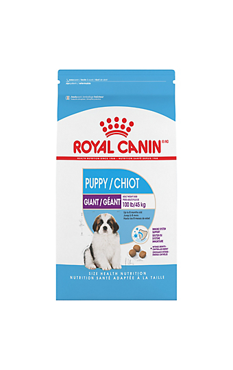 dog food for giant breeds over 99 pounds royal canin. Black Bedroom Furniture Sets. Home Design Ideas
