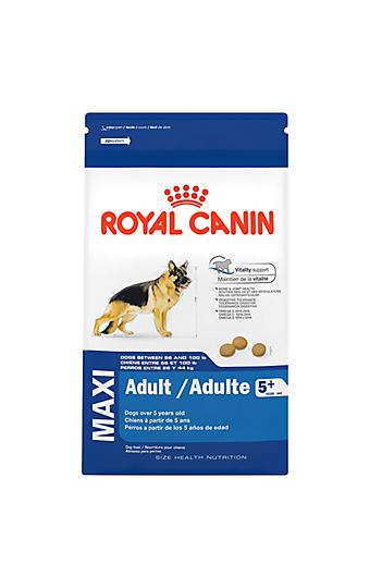 the senior dog life stage royal canin canada. Black Bedroom Furniture Sets. Home Design Ideas