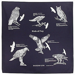 Accessories Nature Facts Bandanas, Birds Of Prey, 256