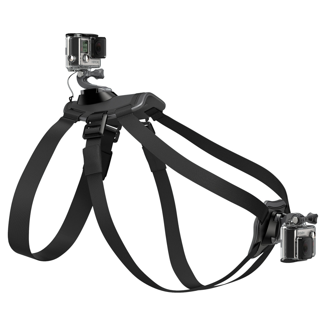 Image of Fetch - Dog Harness