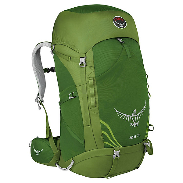 Osprey Ace 75 Backpack - Youth, Ivy Green, 600