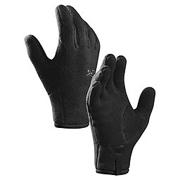 Arc'teryx Delta Glove - Men's, Black, 256