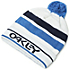 Beanie B1B Logo - Striped