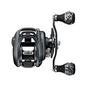 Daiwa Lexa 300 WN Baitcasting 6.3 Reel, , medium