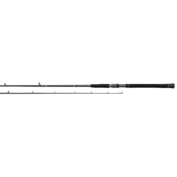 Daiwa Saltist Inshore Casting Rod, , 600