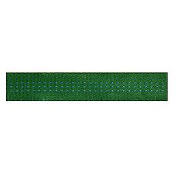 BlueWater 1-inch Climb-spec Webbing Spool, Green, 256
