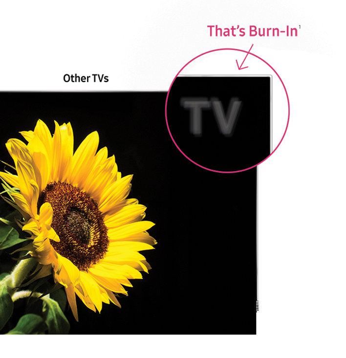 Burn-In* Free for life, Guaranteed**