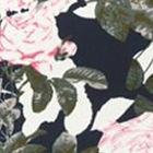 Navy / Pink