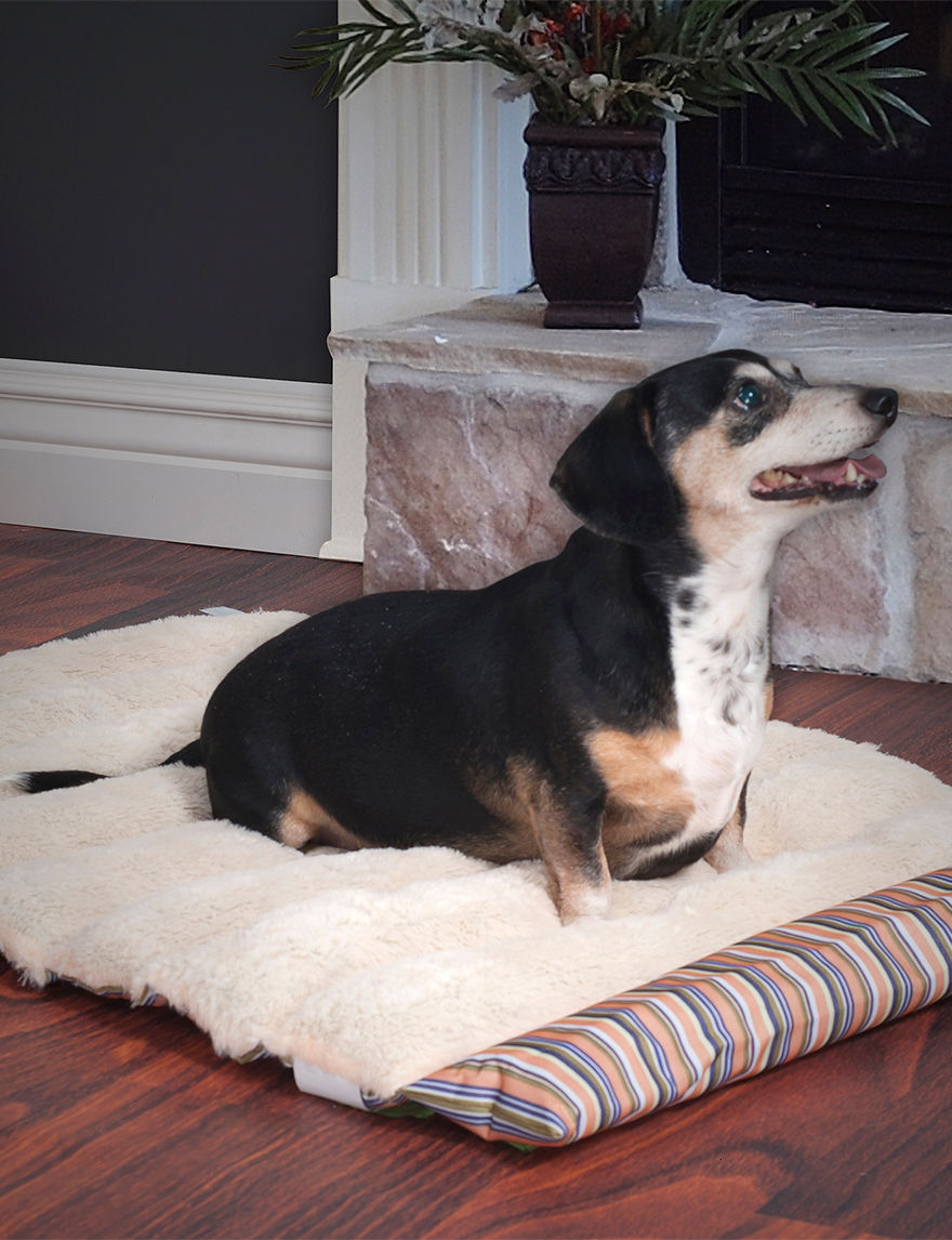 Paw Coral Pet Beds & Houses