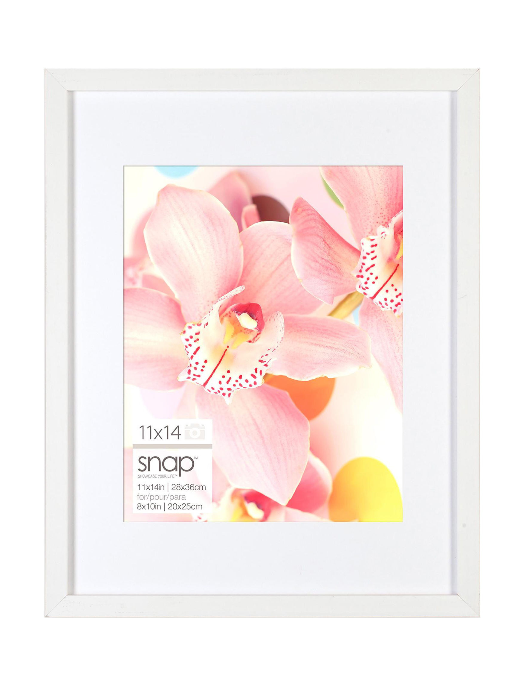 Snap White Frames & Shadow Boxes Home Accents