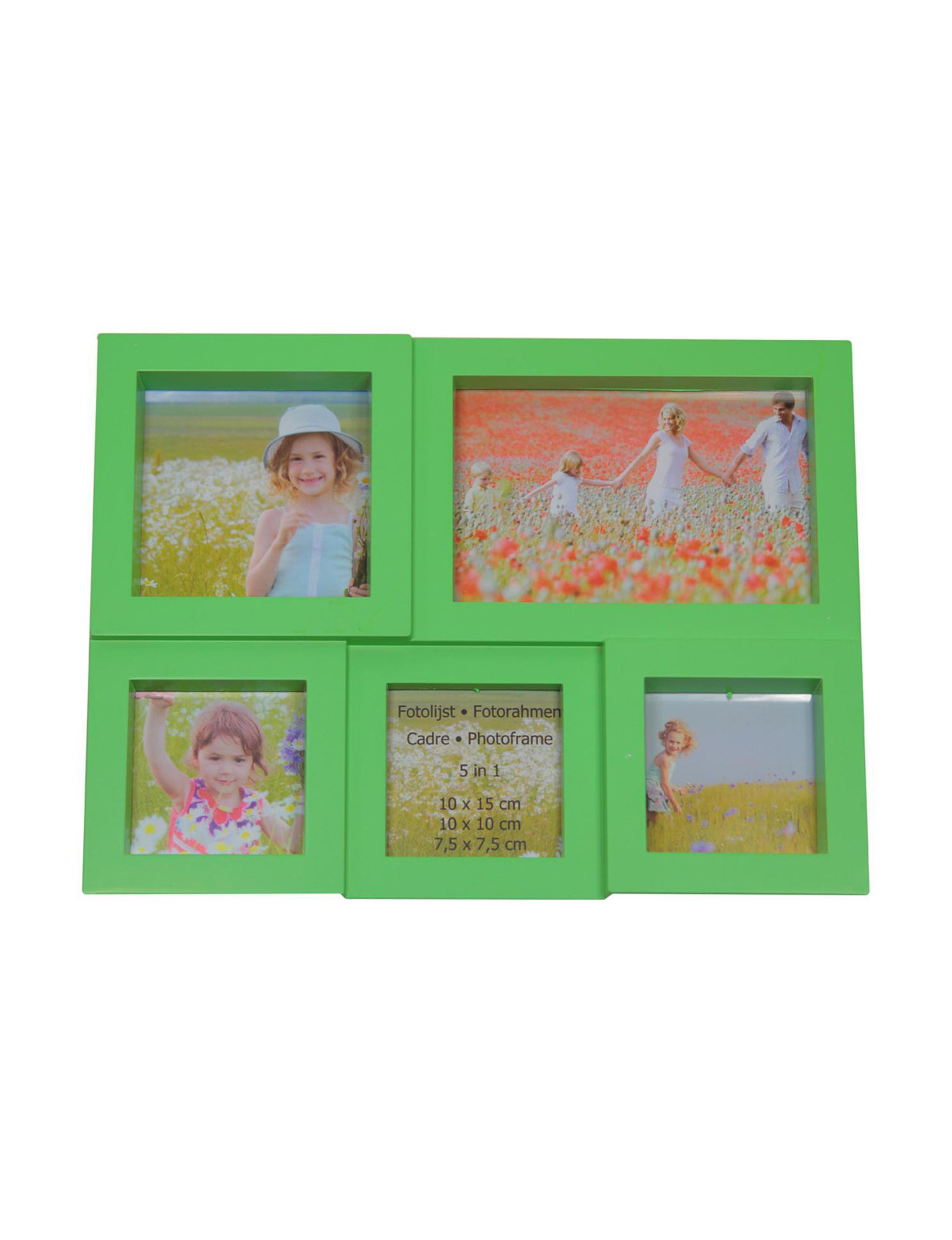 Northlight Green Frames & Shadow Boxes Home Accents