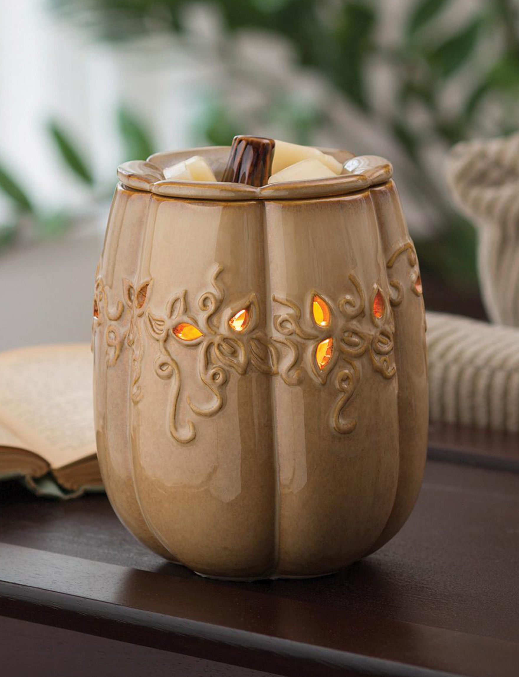 Candle Warmers  Warmers & Plug Ins Wax Melts & Oils Candles & Diffusers