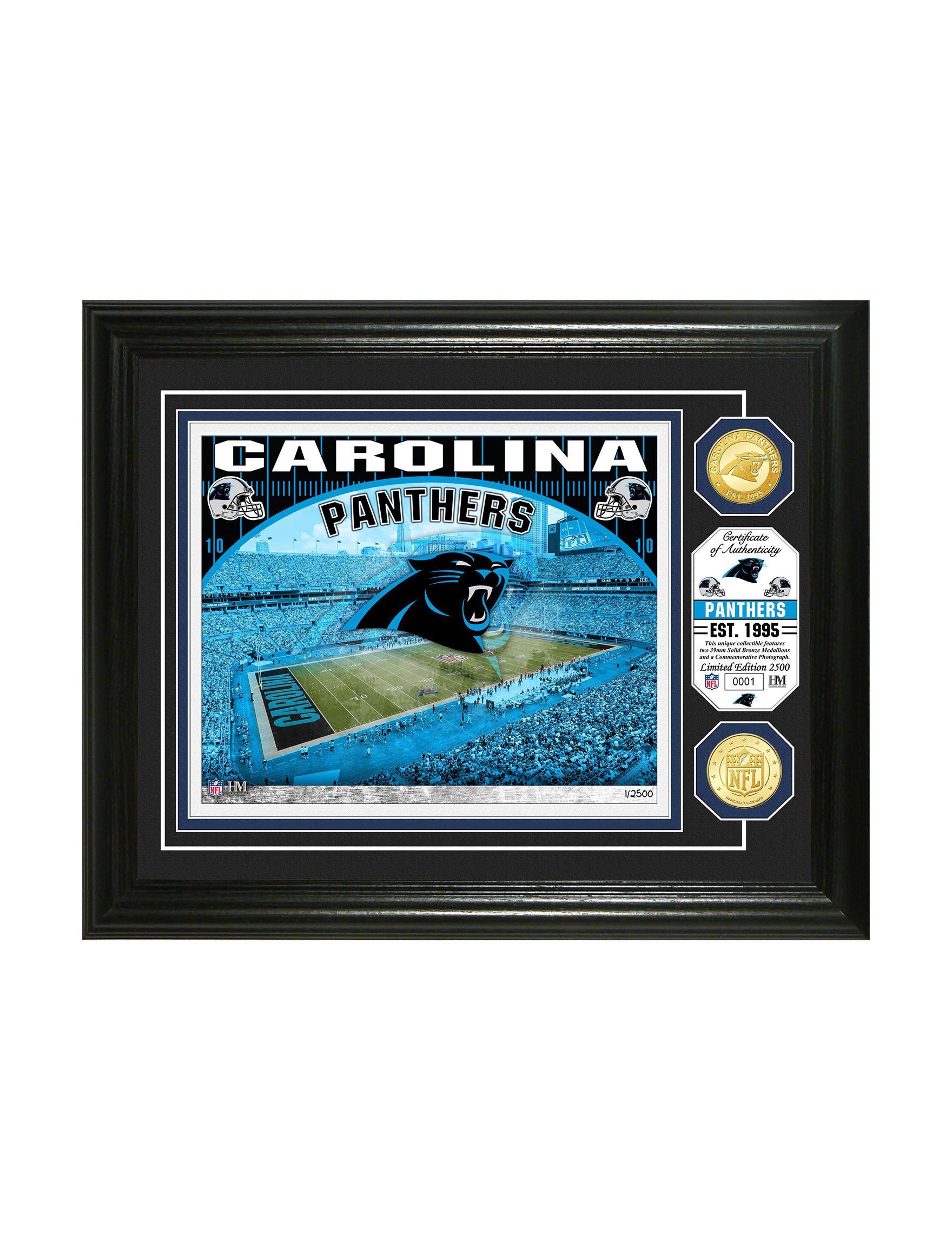 reputable site 9d2be 4f363 Carolina Panthers Stadium Bronze Coin Wall Art | Stage Stores