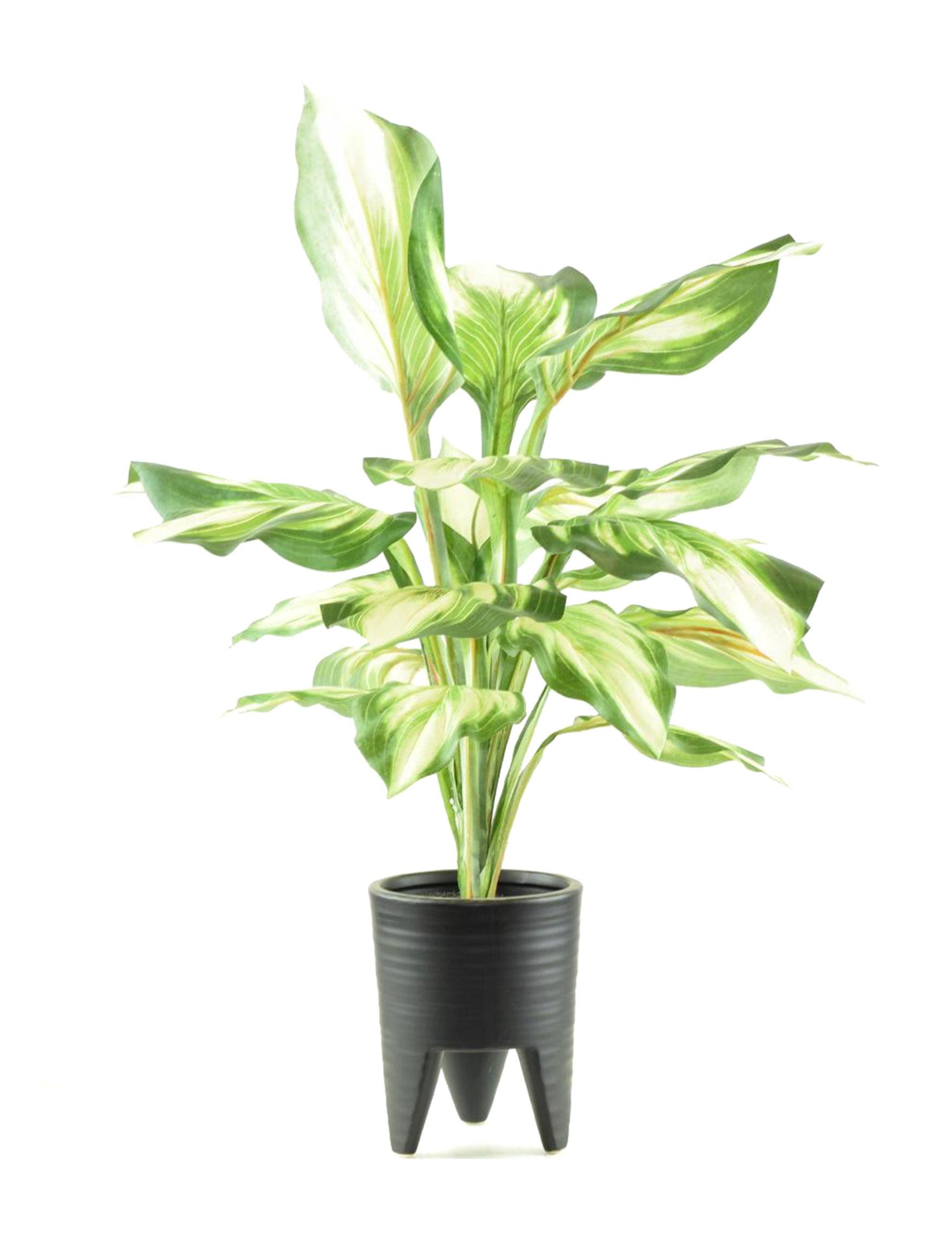 Black Faux Plants Home Accents
