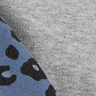 Grey / Blue