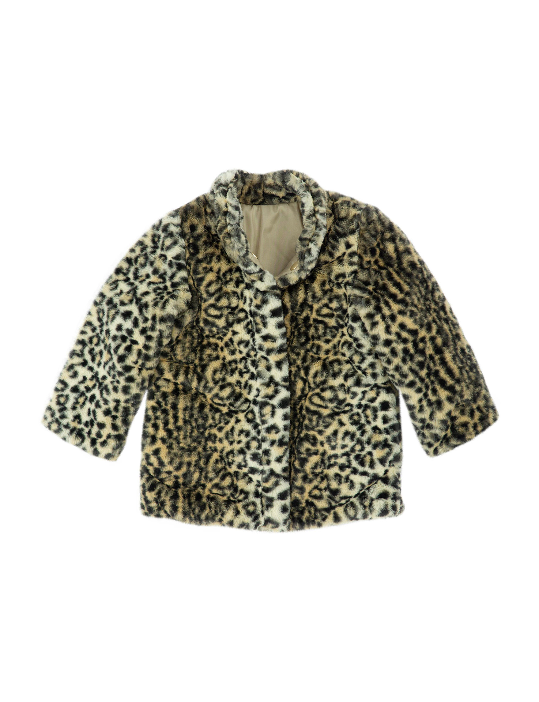 Carter's Cheetah