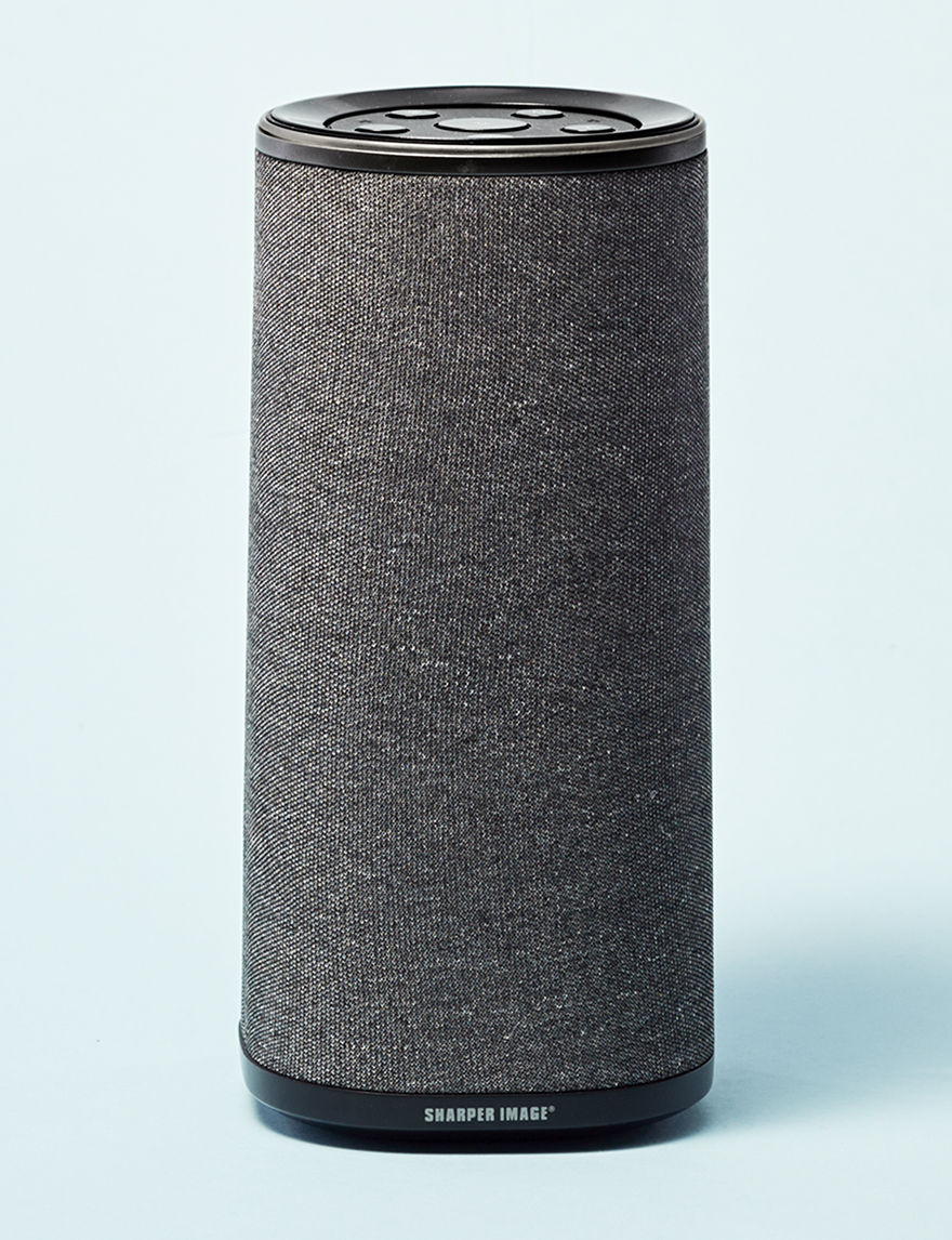 Sharper Image Grey Speakers & Docks