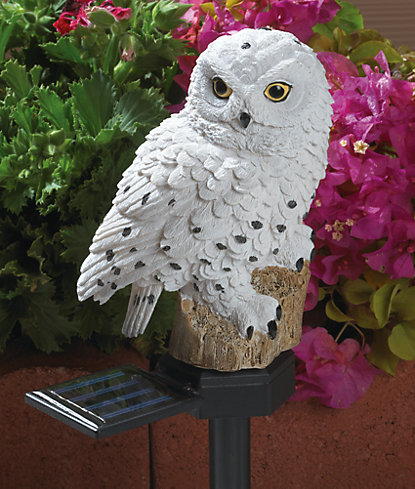 Snowy Owl Solar Light D 233 Cor Amp Bird Feeders Garden Aldens