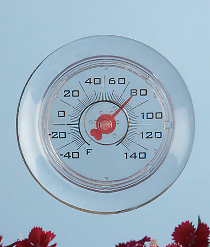 Suction Window Thermometer Watering