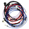 Head and Tail Light Harness FDS3625