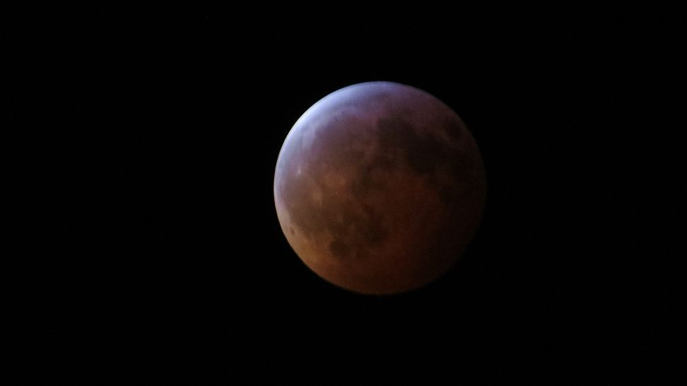 blood moon january 2019 orlando - photo #9