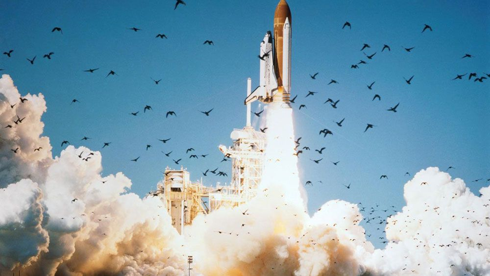 space shuttle challenger project management - photo #19