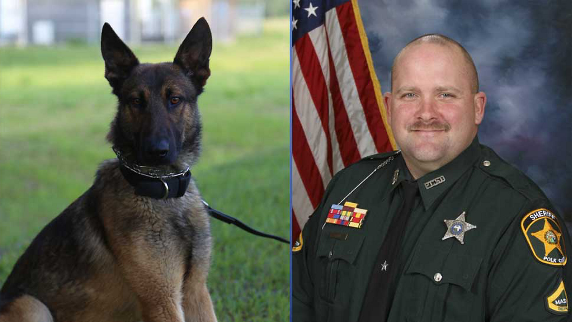 Polk Deputy Severely Injured by Other Deputy's K-9