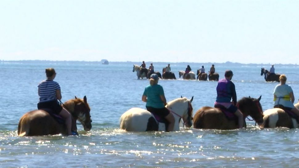 Horseback Water Rides a Thriving Business, But Environment Concerns Exist