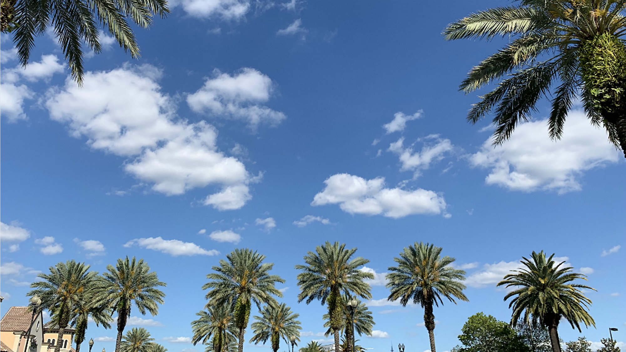 Orlando Area Weather Quiet Sunny Conditions Continue