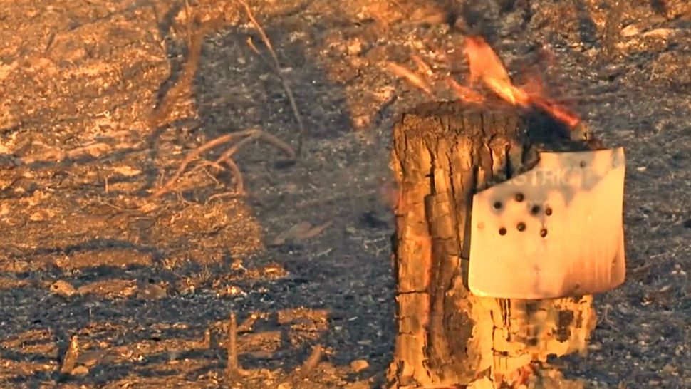 Ocala National Forest Fire Down to Just Under 500 Acres